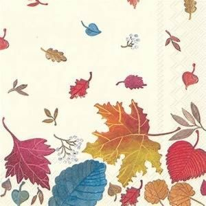 Paper Lunch Napkins, Autumn Day 20 Count